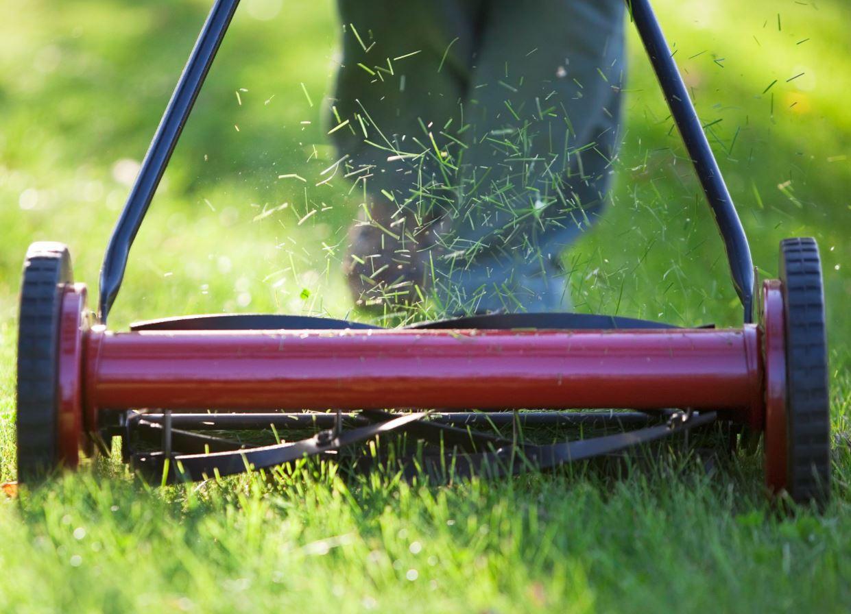 Test av handgräsklippare